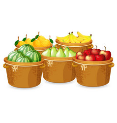 Isolated fruits in different basket vector