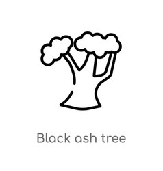 Outline black ash tree icon isolated black simple vector