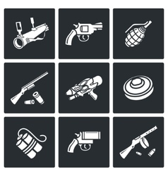 various types weapons icons set vector image