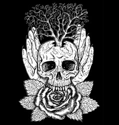 wiccan emblem with skull and rose vector image