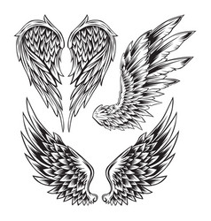 Wings bird feather black white tattoo set 10 vector