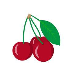 cherry icon sweet cherries vector image