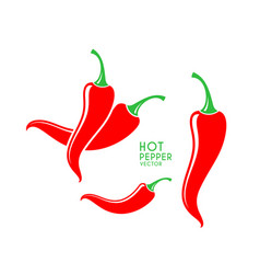 Chili pepper logo vector