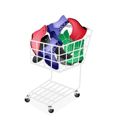 Differrent Style of Women Shoes in Shopping Cart vector image
