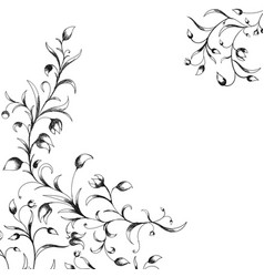 floral elements in sketch style vector image