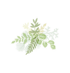 Floral hand drawn composition plant leaves vector