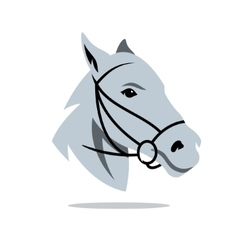 Horse head Cartoon vector image