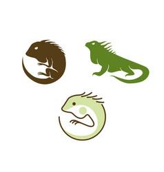 Iguana reptile logo design vector