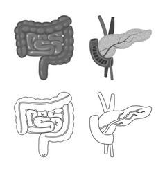 Isolated object biology and scientific icon vector