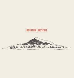 mountain landscape spruce fir forest sketch vector image