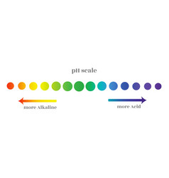 Ph scale with gradation different levels the vector