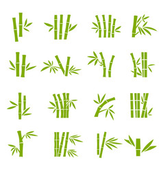 Bamboo tree branches color icons set vector