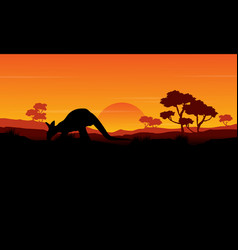 Beauty silhouette of kangaroo landscape vector