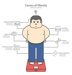 Causes obesity and fat man vector
