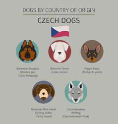 dogs by country of origin czech dog breeds vector image