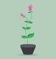 flower pot isolated background vector image