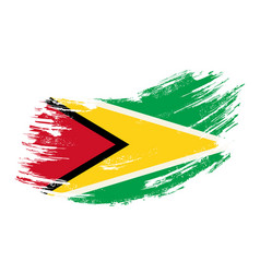 guyanan flag grunge brush background vector image