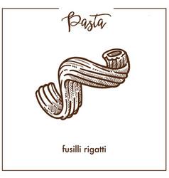 pasta fusilli rigatti chalk sketch icon for vector image