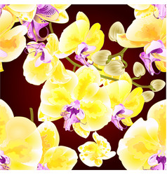 seamless texture orchid phalaenopsis golden vector image