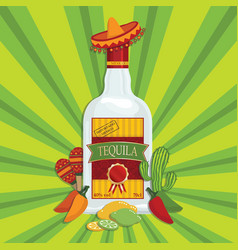 mexican tequila decoration vector image vector image