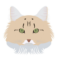 isolated cat avatar vector image