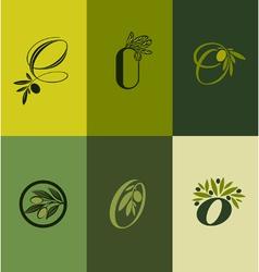 Olive tree branch Set of labels vector image