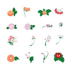 floral pattern decor element set ornamental vector image