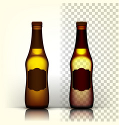 beer bottle product packing design vector image