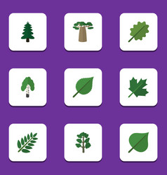 Flat icon bio set of timber park acacia leaf and vector