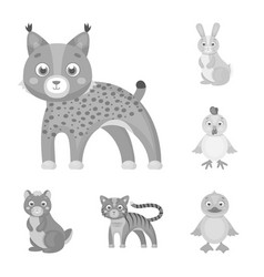 Toy animals monochrome icons in set collection for vector
