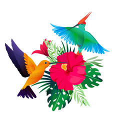Tropical birds plants exotic colored background vector