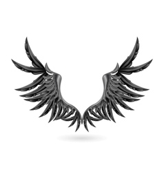 Black wings vector image vector image