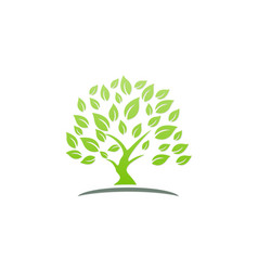 green tree ecology logo vector image vector image