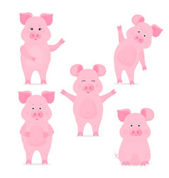 a set of cute piggy characters in different poses vector image