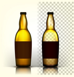 beer bottle alcohol label bar flyer vector image