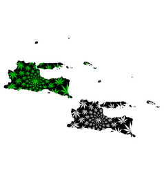 east java subdivisions indonesia provinces of vector image