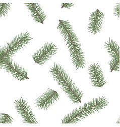 fir branch seamless pattern winter holiday decor vector image