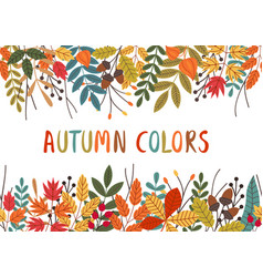 horizontal banner with autumn colorful plants vector image