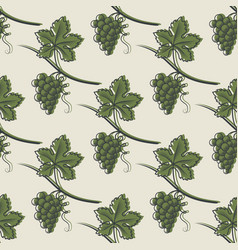 seamless pattern of green grape vector image
