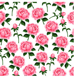 Seamless pattern spring roses flowers vector