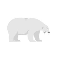 sleepy polar bear icon flat style vector image
