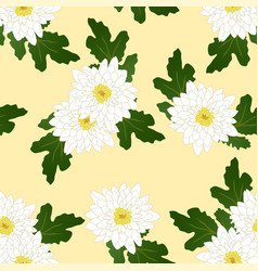 white chrysanthemum on yellow ivory background vector image vector image