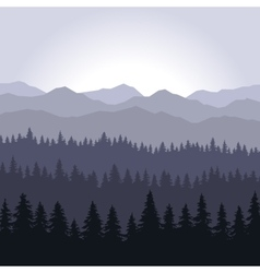Blue Fog Coniferous Forest and Mountains vector image