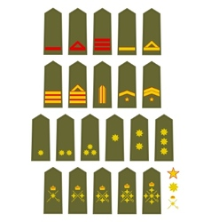 Insignia of the spanish army vector