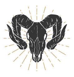 ram skull design elements for label sign logo vector image