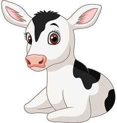 Cute baby cow isolated on white background vector image
