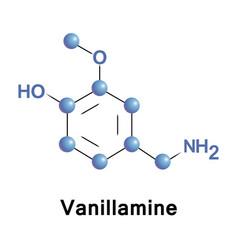 Vanillamine molecular structure vector