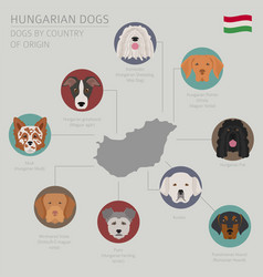 Dogs by country of origin hungarian dog breeds vector