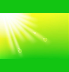 fresh green background with sunlight vector image