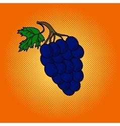 Grapes pop art vector image